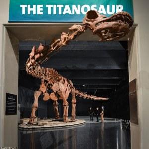 titanousauro